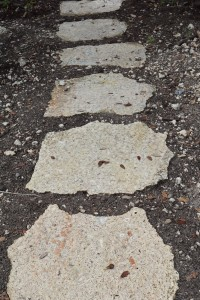 Coral Stone flagstone. Caribbean Coral Stepping stone